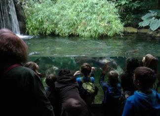 Aquarium Berlin am Zoo